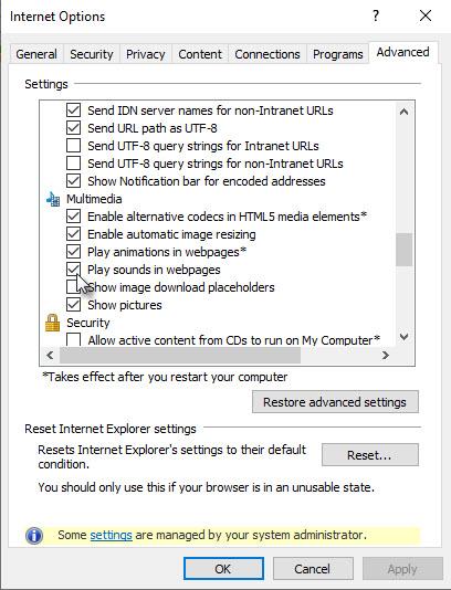 Multimedia-Einstellungen des Internet Explorers