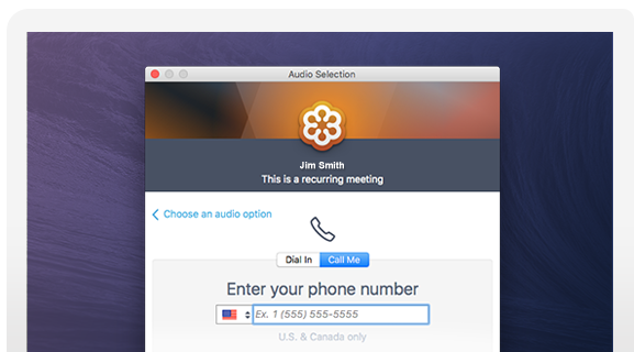 GoToMeeting, Audio Selection