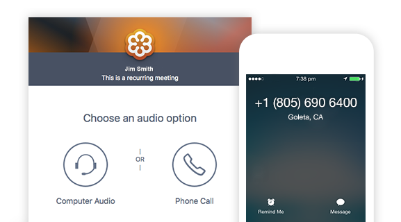 GotoMeeting, Choose Audio Option